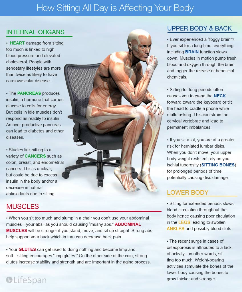 harmful effects of sitting on the body infographic